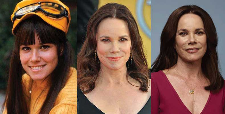 Barbara Hershey Plastic Surgery Before and After 2018